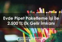 Evde Pipet Paketleme İşi İle Aylık 2.500 TL Ek Gelir