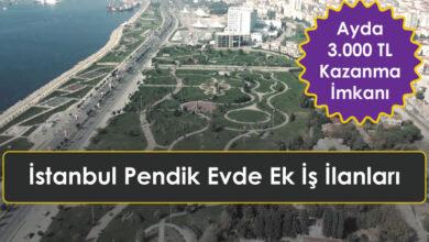 İstanbul Pendik Evde Ek İş İlanları